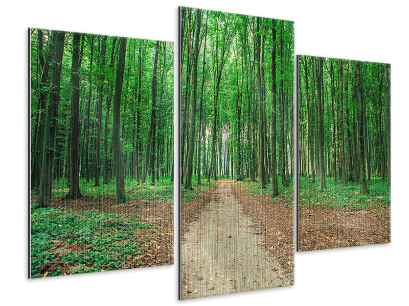 Metallic-Bild 3-teilig modern Tannenwald