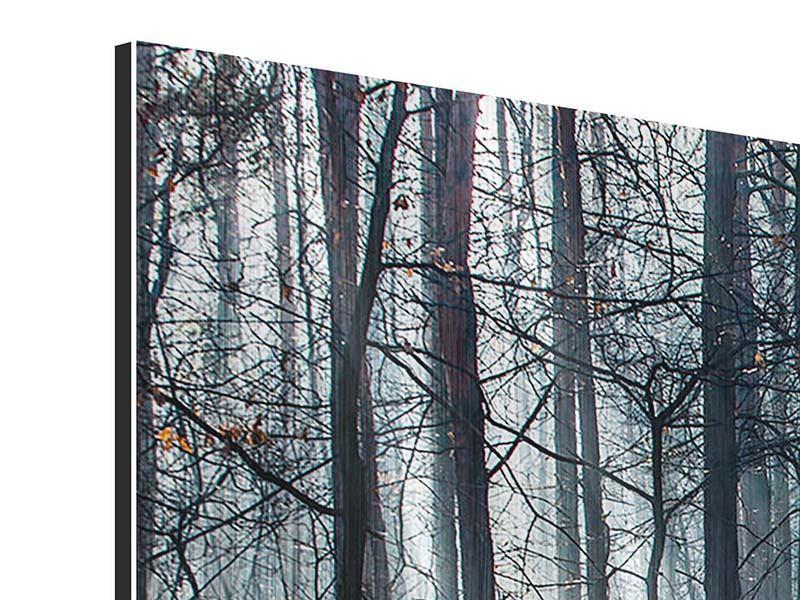 Metallic-Bild 3-teilig modern Wald im Lichtstrahl