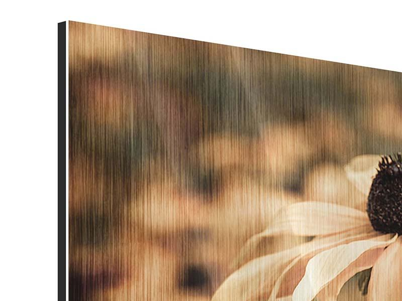 Metallic-Bild 3-teilig modern Margeriten in Sepia
