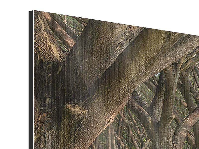 Metallic-Bild 3-teilig modern Alter Baumbestand