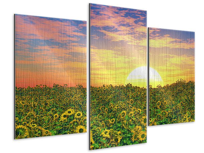 Metallic-Bild 3-teilig modern Blumenpanorama bei Sonnenuntergang