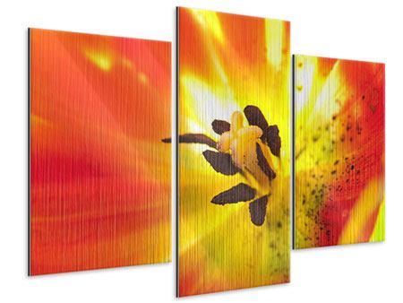 Metallic-Bild 3-teilig modern Die Narbe einer Tulpe XXL