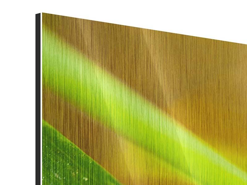 Metallic-Bild 3-teilig modern XXL Marienkäfer