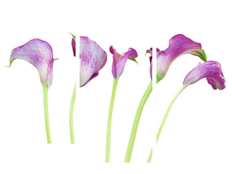 Metallic-Bild 3-teilig modern Callas in Lila