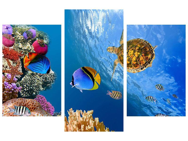 Metallic-Bild 3-teilig modern Fisch im Wasser