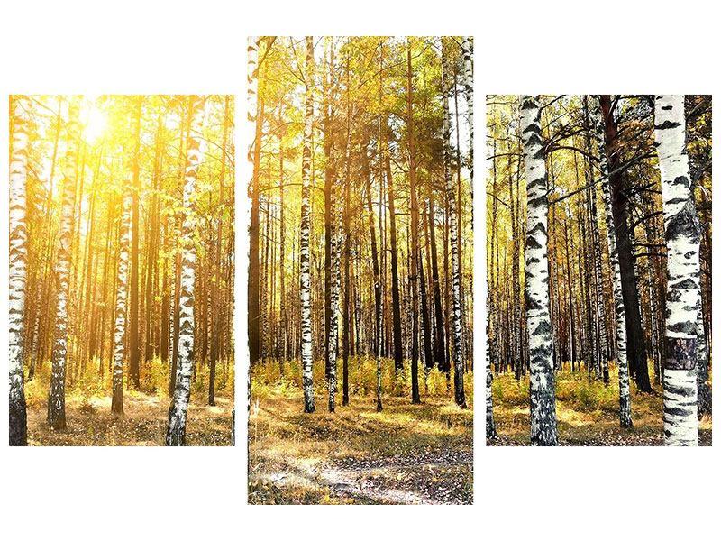 Metallic-Bild 3-teilig modern Birkenwald
