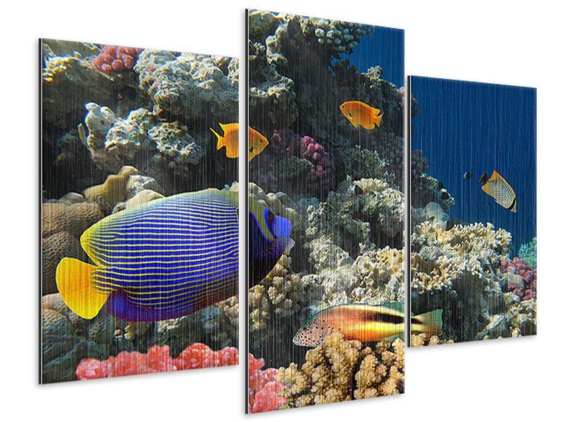 Metallic-Bild 3-teilig modern Das Aquarium