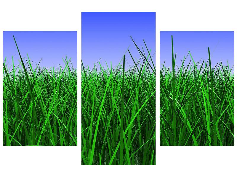 Metallic-Bild 3-teilig modern Im Gras
