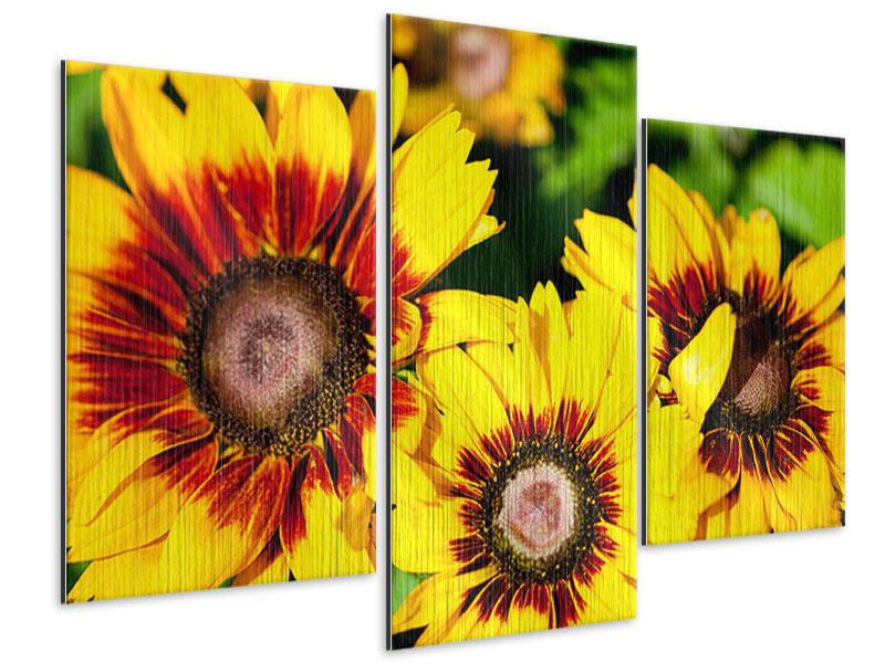Metallic-Bild 3-teilig modern Reife Sonnenblumen