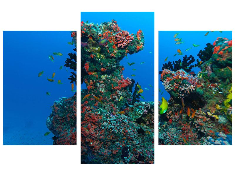 Metallic-Bild 3-teilig modern Die Welt der Fische