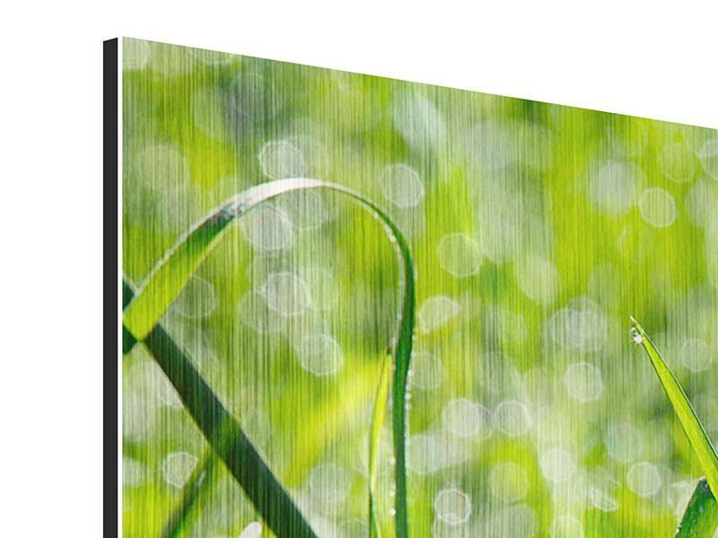 Metallic-Bild 3-teilig modern Sonniges Gras