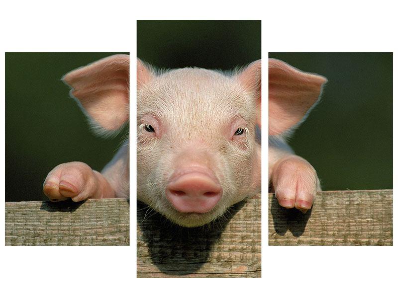 Metallic-Bild 3-teilig modern Schweinchen Namens Babe