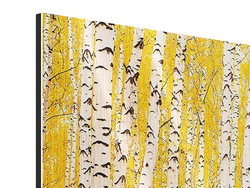 Metallic-Bild 3-teilig modern Der Birkenwald im Herbst