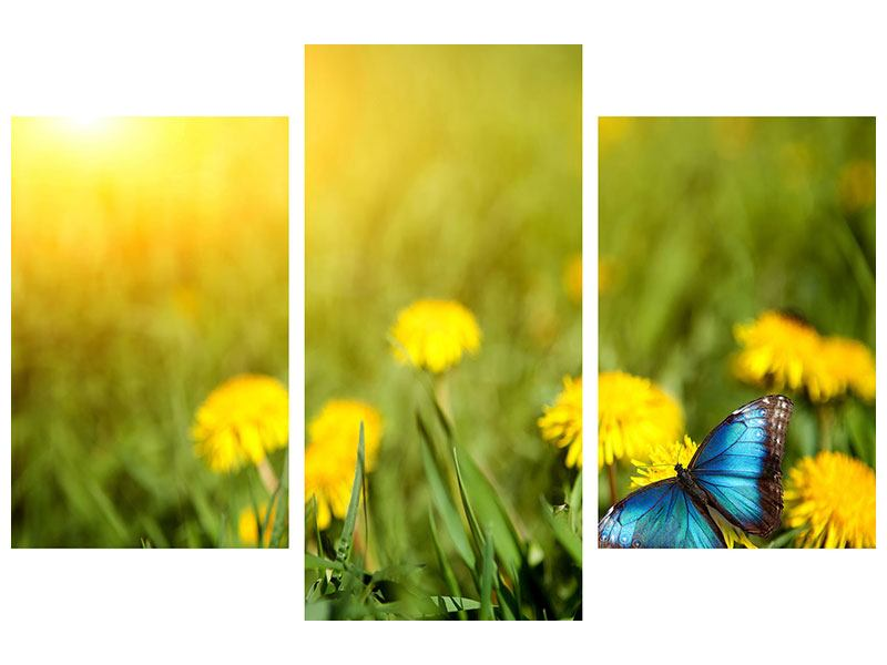 Metallic-Bild 3-teilig modern Der Löwenzahn und der Schmetterling