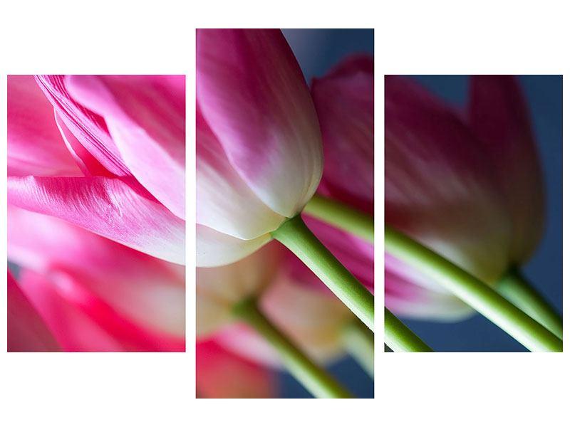 Metallic-Bild 3-teilig modern Makro Tulpen