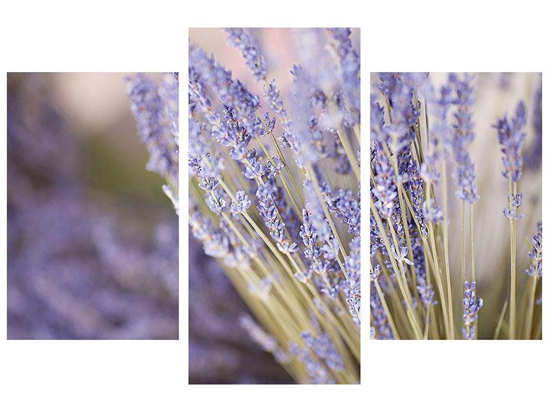 Metallic-Bild 3-teilig modern Lavendel XXL
