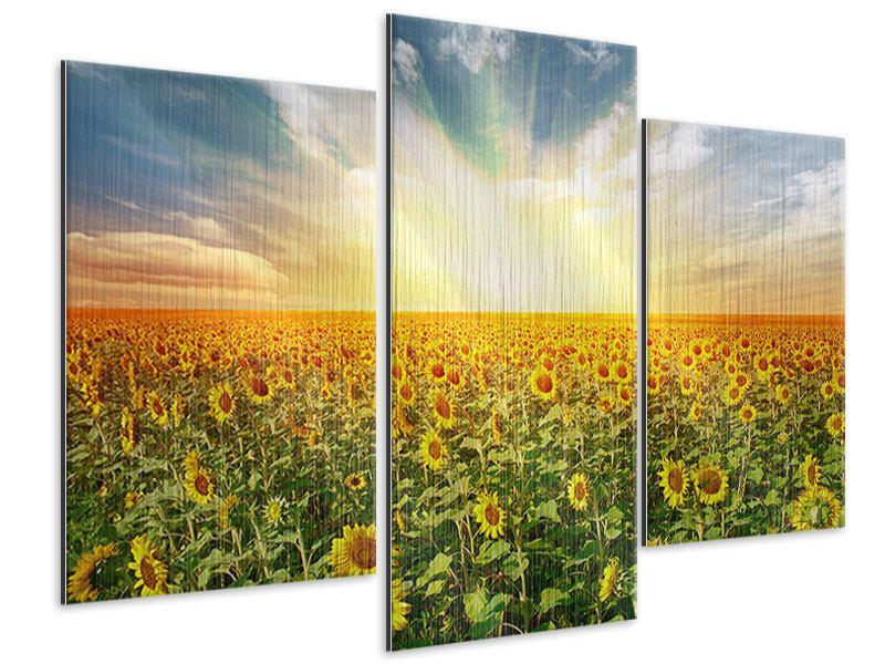 Metallic-Bild 3-teilig modern Ein Feld voller Sonnenblumen