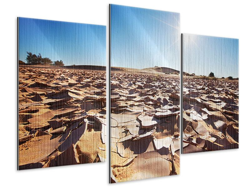 Metallic-Bild 3-teilig modern Dürre