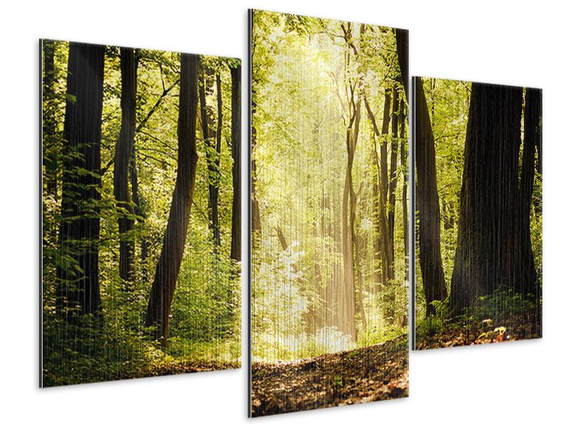 Metallic-Bild 3-teilig modern Sonnenaufgang im Wald