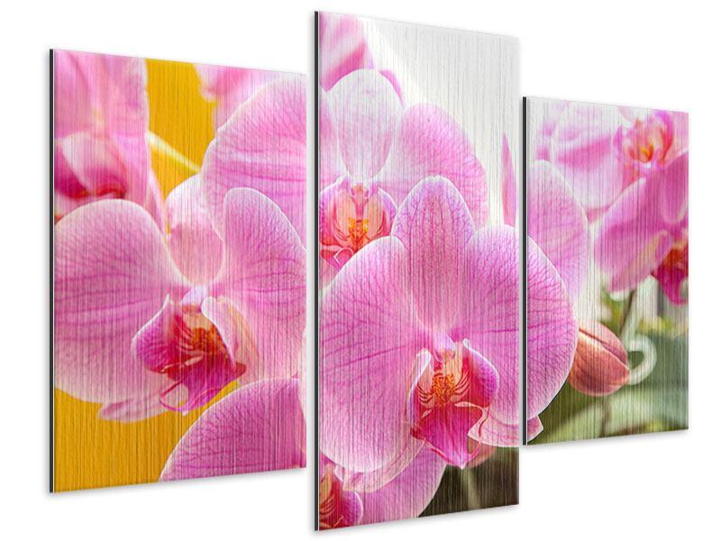 Metallic-Bild 3-teilig modern Königliche Orchideen