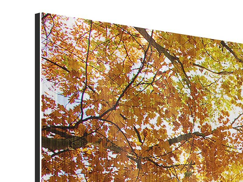 Metallic-Bild 3-teilig modern Herbstbäume
