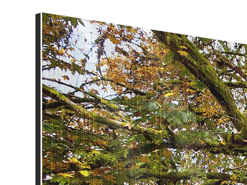 Metallic-Bild 3-teilig modern Mein Lieblingsbaum