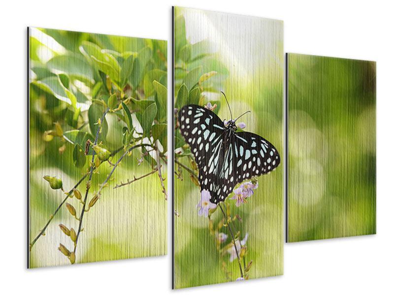 Metallic-Bild 3-teilig modern Papilio Schmetterling XXL