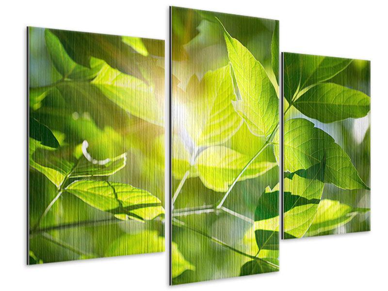 Metallic-Bild 3-teilig modern Es grünt so grün