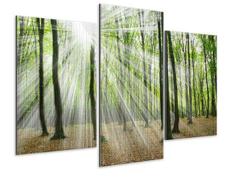 Metallic-Bild 3-teilig modern Magisches Licht in den Bäumen