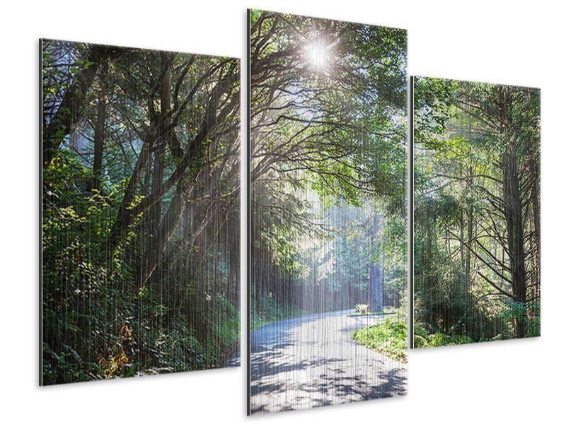 Metallic-Bild 3-teilig modern Sonniger Waldweg