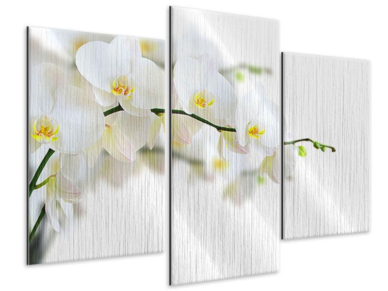 Metallic-Bild 3-teilig modern Weisse Orchideen