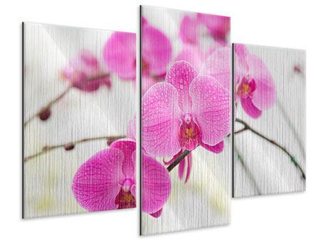 Metallic-Bild 3-teilig modern Das Symbol der Orchidee