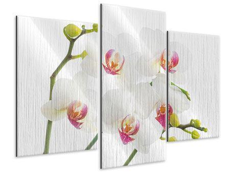 Metallic-Bild 3-teilig modern Orchideenliebe