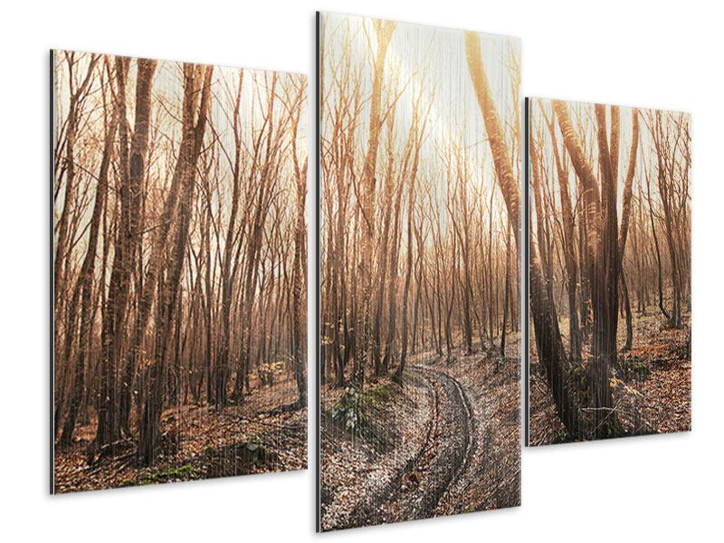 Metallic-Bild 3-teilig modern Der kahle Wald