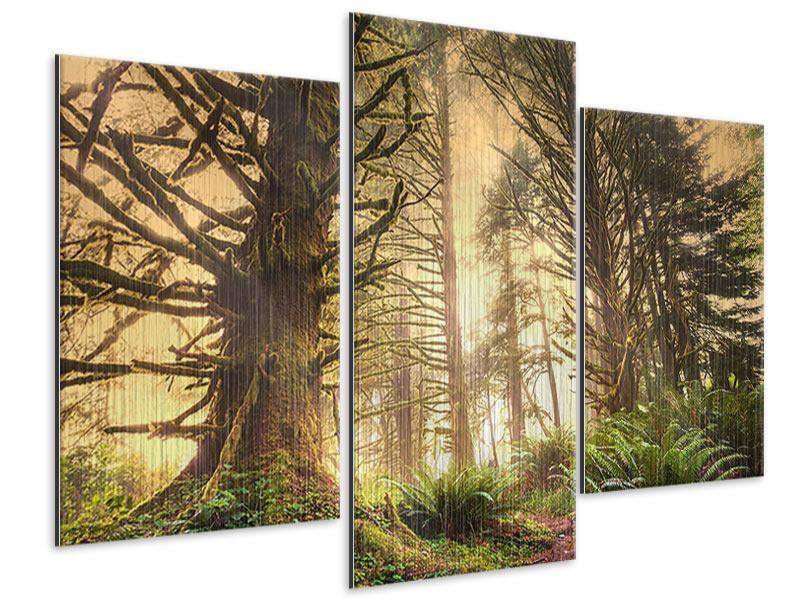 Metallic-Bild 3-teilig modern Sonnenuntergang im Dschungel