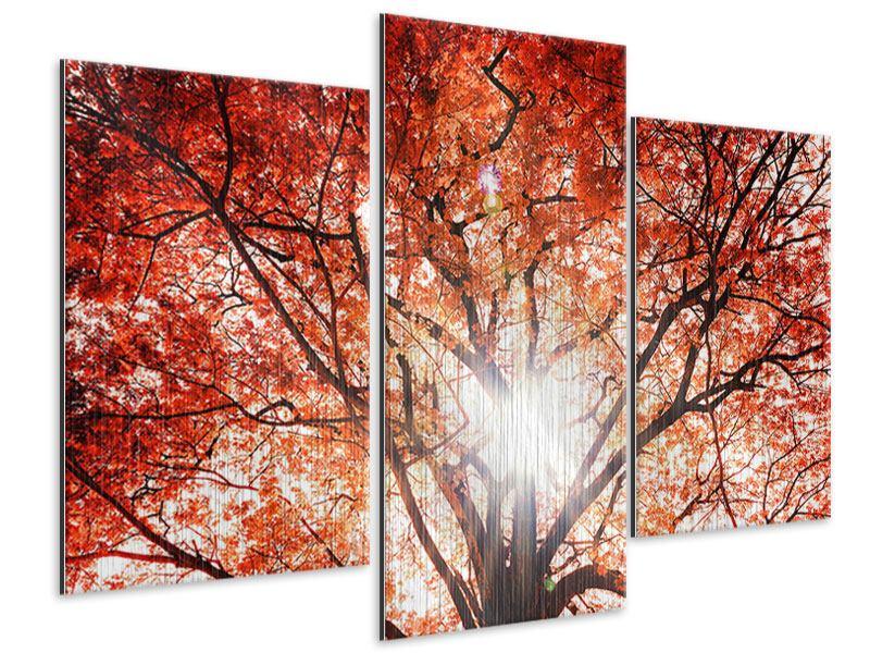 Metallic-Bild 3-teilig modern Herbstlicht