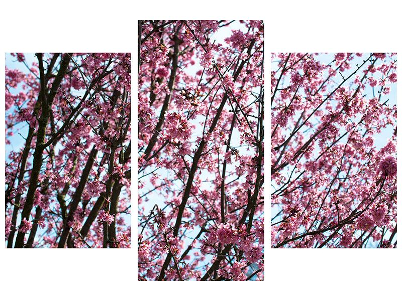 Metallic-Bild 3-teilig modern Japanische Blütenkirsche