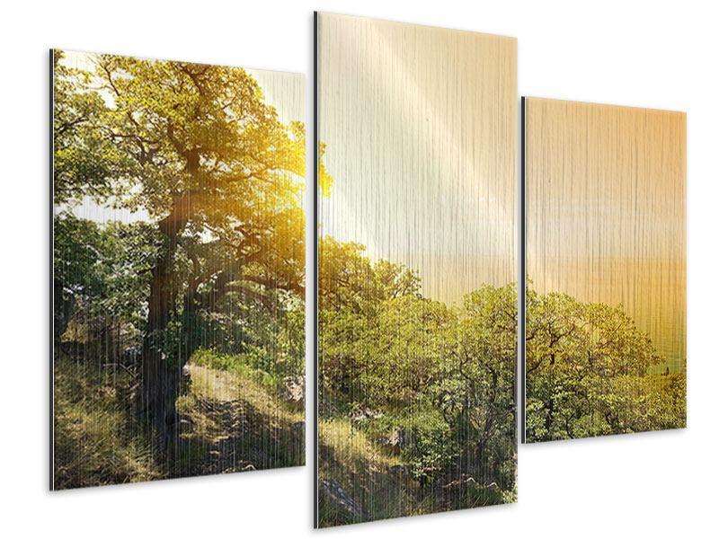 Metallic-Bild 3-teilig modern Sonnenuntergang in der Natur