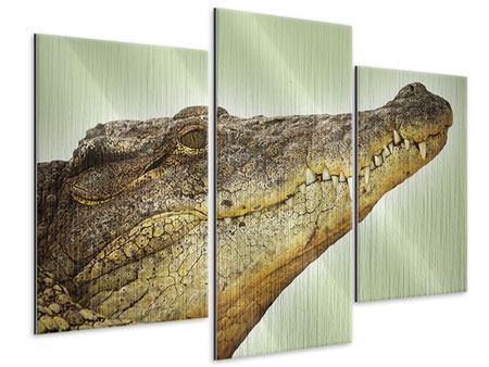 Metallic-Bild 3-teilig modern Close Up Alligator