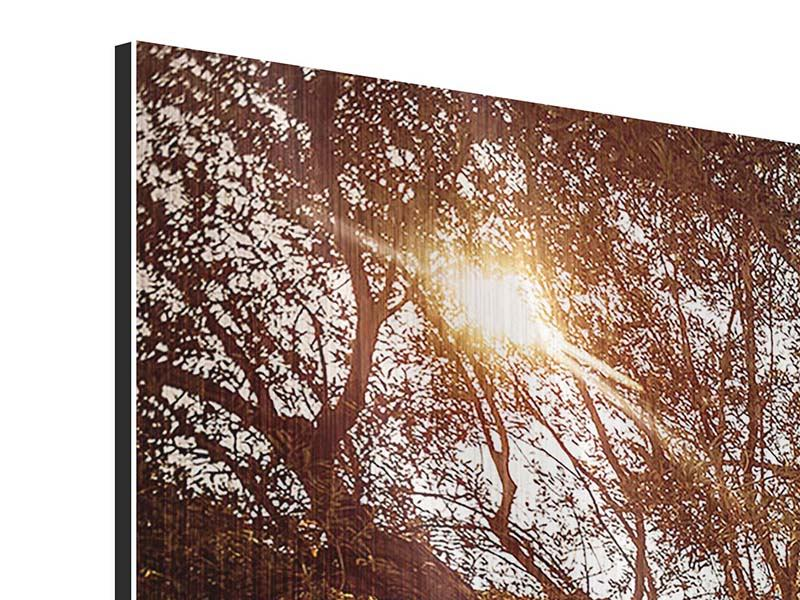 Metallic-Bild 3-teilig modern Olivenhain