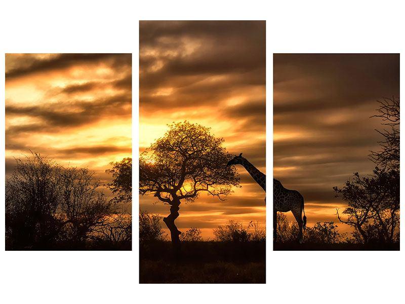 Metallic-Bild 3-teilig modern African Dreams