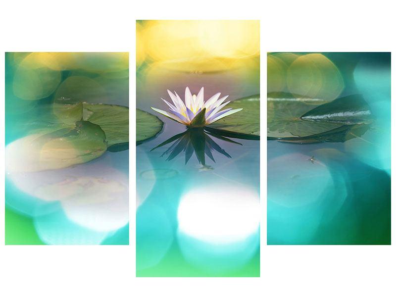 Metallic-Bild 3-teilig modern Lotus-Spiegelung