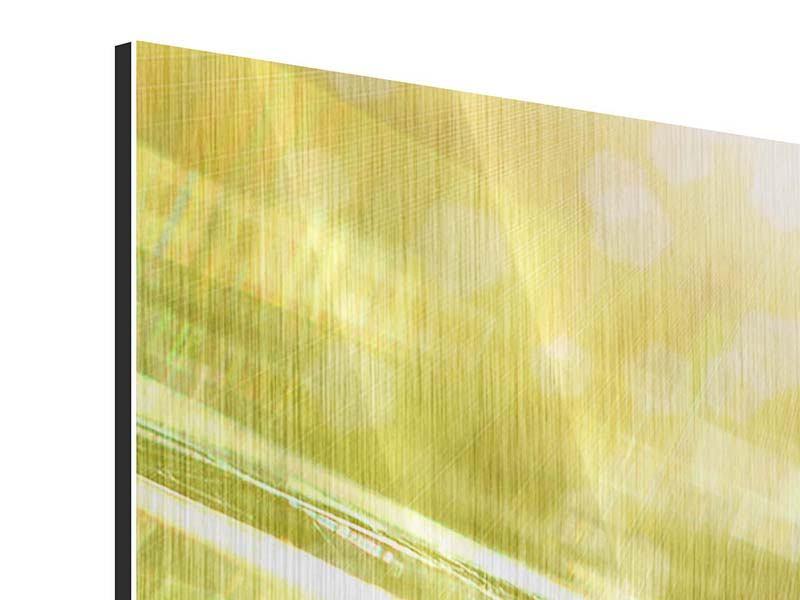 Metallic-Bild 3-teilig modern Marienkäfer im Sonnenlicht