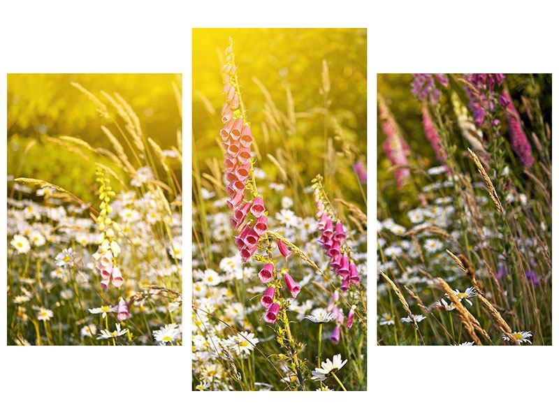 Metallic-Bild 3-teilig modern Sommerliche Blumenwiese