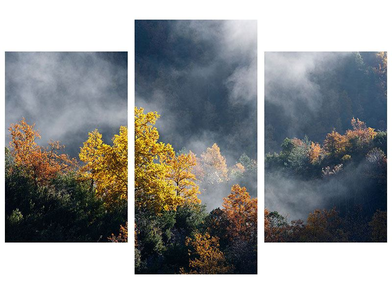 Metallic-Bild 3-teilig modern Mondscheinwald