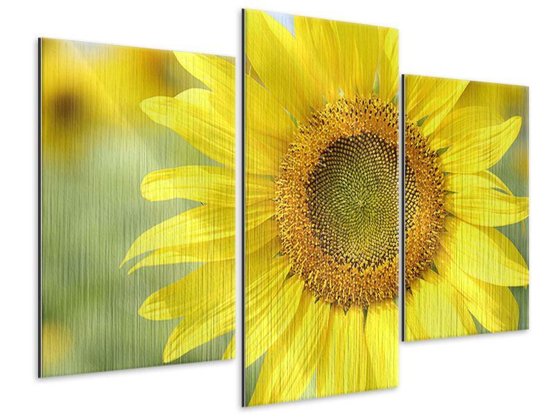 Metallic-Bild 3-teilig modern Die Blume der Sonne