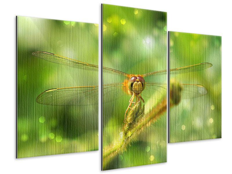 Metallic-Bild 3-teilig modern XXL-Libelle