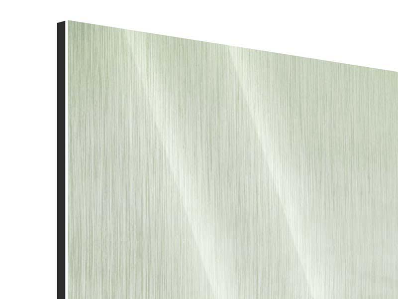 Metallic-Bild 3-teilig modern Der Auwald im Nebel