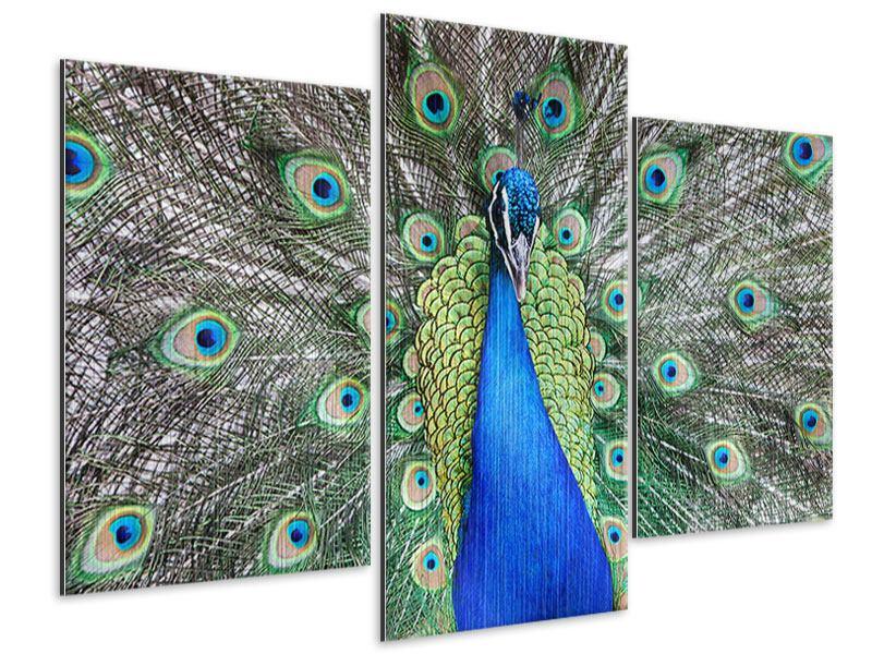 Metallic-Bild 3-teilig modern Blauer Pfau