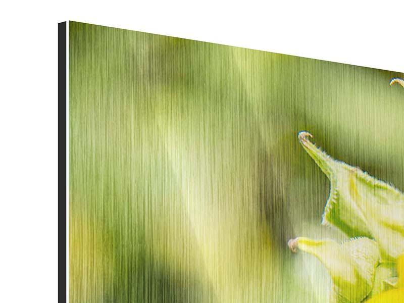 Metallic-Bild 3-teilig modern Wilde Sonnenblume